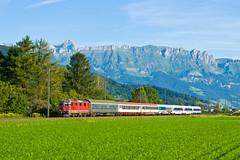 Re 420.xxx SBB, EN 464, Sevelen  Weite (cz.fabijan) Tags: railway eleznice train vlak vcarsko schweiz switzerland sbb cff ffs re420 re44ii en464 sevelen stgallen