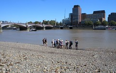 The FROG group on the foreshore (Thames Discovery Programme) Tags: thamesdiscoveryprogramme westminster london community archaeology riverthames fwm05