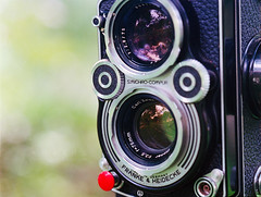 My Rolleiflex 3.5F () Tags: nikonsupercoolscan9000ed contax645 contax 645 carlzeiss people china landscape marco nature portrait  120 snapshot mediumformat film filmphotography apomakroplanart4120  analog negative negativefilm kodak bokeh camera filmcamera kodakportra400 portra400 planar zeisslenses carlzeisslenses cameraporn color colorfilm wuxi