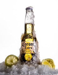 CoronaBeer (Connie Lyr) Tags: corona beer studio light awesome people social experiment publicity work test student