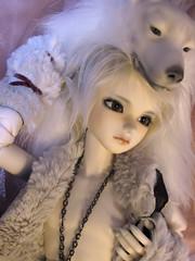 IMG_0210-1 (P-DOLL) Tags: angelheim luka bjd doll