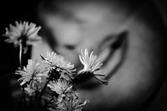 Tribute (Stefano@59 Ph.) Tags: flowers lips portrait bw