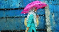 Girl with Pink Umbrella (Sakia Rafique) Tags: rain umbrella rainyseason 35mmnikkor meghla bristy bristi dhakabangladesh rainindhaka  nikond5100 sakiarafique dhaka2012 dhakastory adayraining pinkumbrellainrain thatsmyumbrella onerainymoment ekbristite amarsharatadin bristitomakdilam bristirchata chatabristi bristidekhechi