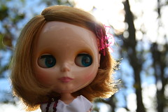 Sunny in the Autumn sunshine :)