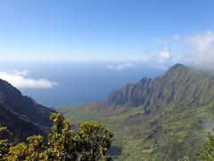 Kauai (trailwalker52) Tags: forest hawaii rainforest hiking trail kauai napali