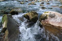 Argen 6 (Stefan Munder) Tags: lake creek fluss bodensee constance argen