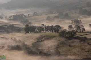 Dove Valley Mist