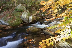 Fishing Creek (rablot) Tags: creek fallcolors fallfoliage motionblur troutstream fishingcreek frederickmaryland troutcreek babblingbrook