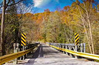 Bridge Near Finch Meander Trail
