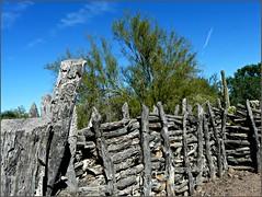 Rustic Fence (Oh Kaye) Tags: wood arizona phoenix rustic desertbotanicalgarden fencefriday