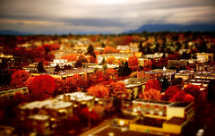 Autumn Vancouver Canada Miniature (TOTORORO.RORO) Tags: camera city autumn canada tree fall tourism colors skyline vancouver lens toy landscapes miniature bc view zoom cloudy britishcolumbia sony alpha retractable oss nex greatervancouver mirrorless pictureeffect powerzoom 1650mm nex6 selp1650 playmemoriescameraapps toywarm