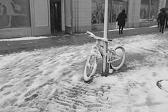 Wintereinbruch (sehender1979) Tags: schnee autumn winter bw white snow black bike bicycle germany saxony herbst sachsen fujifilm schwarz fahrrad chemnitz weis x100