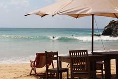 Praia do Cachorro (Rodrigo Valena) Tags: summer brazil praia beach brasil island paradise ile playa atlantic verano tropical vero material plage isla paraiso ilha brasile nordeste atlantico esmeralda noronha rodrigovalena