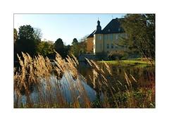 Schloss Dyck II (Thonic_61) Tags: fujifilm schloss rheinland neuss wasserschloss dyck xs1 fujixs1