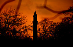 Joseph Chamberlain Memorial Clock Tower (nic_r) Tags: trees sunset orange tower clock silhouette birmingham memorial branches clocktower birminghamuk oldjoe birminghamuniversity birminghamuni universityofbirmingham josephchamberlain josephchamberlainmemorialclocktower