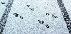 Am I Coming or Going? (Judith White) Tags: winter snow january tracks footprints tread tyres tyretracks july2012