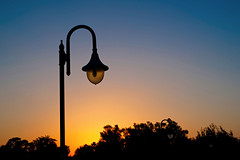 850E4487 - Light pole and the sunset (crimsonbelt) Tags: park light sunset nature dubai pole safa