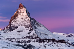 La grande belle en mauve (StephAnna G) Tags: winter mountain snow alps sunrise landscape switzerland colorful swiss accepted1of100 matterhorn wallis valais cervin paronama thepowerofnow