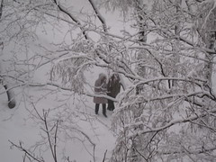 wet snow (VERUSHKA4) Tags: city winter people bw white snow tree nature wet yard canon grey photo europe day cityscape view image moscow branches trunk february scape vue astounding