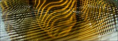 just about un-done.... (margeois) Tags: abstract lines curves geometrics yellow gold