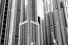 Concrete Jungle (Nick Sloter) Tags: blackandwhite buildings dubai uae concrete towers city marina cityscape dubaimarina architecture bw black white nikond5100 nikon sigma sigma35mm nocolor monochrome nopeople