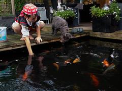 DSCF2274 (ronaldzijlstra2) Tags: kid son boy dog cairnterrier koi vis vish vijver pond
