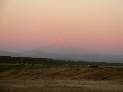 Good night, Mt. Hood. #mthood (urbanadventureleaguepdx) Tags: mthood