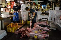 tsukiji-14 (winnieyklai) Tags: tsukiji fish fishmarket market tokyo japan seafood tuna