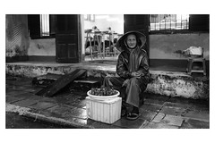 Old woman and little birds. Hoi An, 2011 (minus6 (tuan)) Tags: minus6 mts