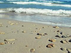 IMG_1402 (dorcolka011) Tags: greece grcka tsilivi zakynthos zakintos more sea seaside