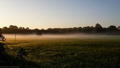 Taking the scenic route (katrin glaesmann) Tags: hannover morgennebel frhnebel scenicroute fog early beforework aufmwegzurarbeit ricklingen landscape sunrise