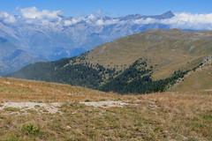 IMG_6678 (rickyrebora) Tags: col basset sauze doulx sestriere summer mountain montagna prati