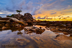 Exotica (zollatiff) Tags: waterscape seascape labuan bonsai beautifulsunset colorful peaceful evening dusk zollatiffflickr nikond7000 nikkor1224 leefilter longexposure travelmalaysia tree scenery water sea ocean nature lowlight borneo layanglayangan exotica lonetree