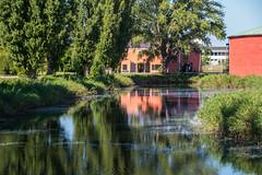 Reflection (Maria Eklind) Tags: malmcastle houses malm trees nature reflection spegling sweden outdoor boats europe dfiskehoddorna malmhus skneln sverige se