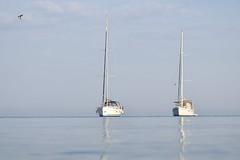 Boote im Hafen von Petrcane (jannebaer) Tags: kroaten mittelmeer sommer petrcane gopro segelboot
