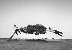 Don't let him get away (Pedro Daz Molins) Tags: surrealism surreal surrealist surrealismo surrealista pedro diaz molins black white blanco negro conceptual arbol tree wind viento man friends nikon d800 photomanipulation fotomanipulacin