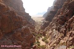 The end of the Canyons in Wadi Rum and the Valley of Aqaba, Jordan (ssspnnn) Tags: acuifero watertable valley valle vale mantoacuifero aqaba desierto deserto desert wadirum jordan jordania canoneos70d spnunes snunes spereira spereiranunes nunes