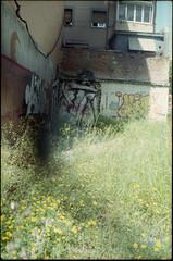 2016 (uno900) Tags: streetartmadrid graffitimadrid arteurbanomadrid graffiti madrid street art arte urbano graffitis espaa spain ze carrion zecarrion carabanchel anorexia