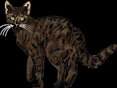 Un chat errant (Isaszas) Tags: drawing dessin tekening vectoriel cat katze starscat tomcat digitalart zeichnung utilisationassociative editionsassociative