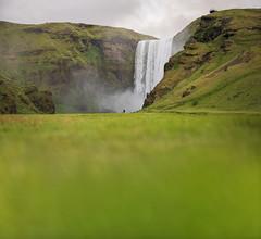Skogafoss waterfall and blurred grass. Iceland (maxsaf) Tags: grass rock natural landscape sunset nature flower mountains skogar lupine skogafoss waterfall river icelandic outdoors sun europe iceland landmark