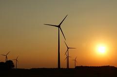 Im letzten Sonnenlicht (isajachevalier) Tags: sonnenuntergang landschaft licht abend abendstimmung windkraftrder technik sachsen panasonicdmcfz150