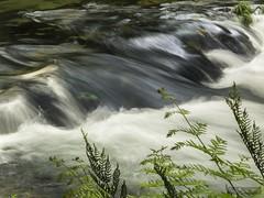 Galicia- Rio Verdugo (LUIS FELICIANO) Tags: rioverdugo rio agua cascadas natura naturaleza airelibre exterior olympus e5 lent1122mm pontecaldelas galicia espaa spain