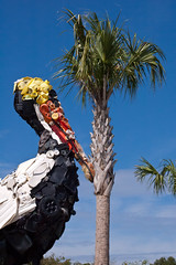 Recycled (Thomas Grooms) Tags: trash recycled mountpleasant pelican palm charleston recycle palmetto
