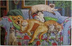 The Forbidden Couch (Joy Campbell) (Leonisha) Tags: dog cat chat puzzle hund katze jigsawpuzzle