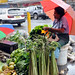 In the largest agriculture-based countries of the Pacific region, women market vendors have long been keeping their families and communities afloat