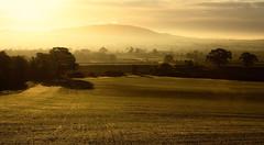 Flash of Light (Natasha Bridges) Tags: morning autumn light mist sunrise countryside shropshire fields wrekin