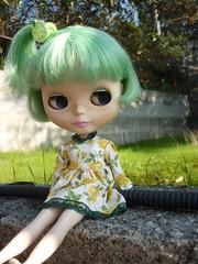 Bo my Enchanted Petal
