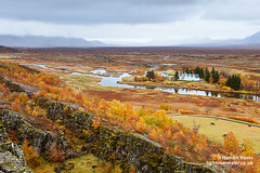 Autumn Colours, Icelandic Style (Hamish Roots) Tags: autumn trees red orange colour fall church yellow river thing plate parliament plain thingvellir divide tectonic pingvellir
