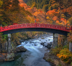 SACRED BRIDGE (ajpscs) Tags: autumn leaves japan japanese tokyo maple nikon foliage momiji  nippon   tochigi  d300  nikk  shinky futarasanjinja  futarasanshrine daiyariver ajpscs  sacredbridge mygearandme