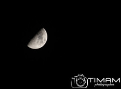 """IMG_8091 (""""Timam"""") Tags:"""